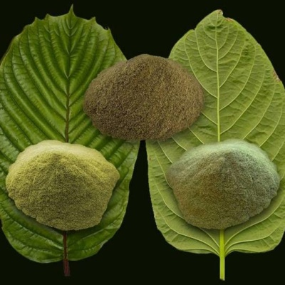 Kratom Vein Colors